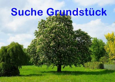SUCHE-Grundstück Beispiel
